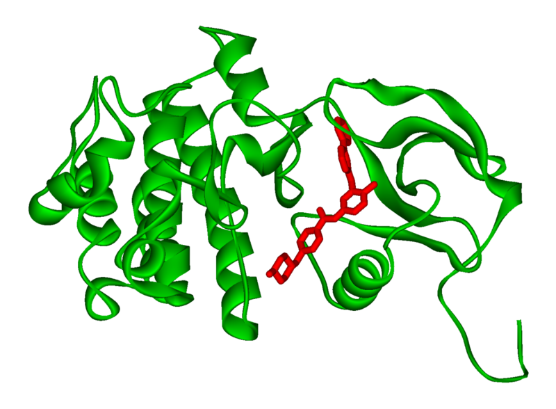 Imatinib blockiert die defekte Bcr-Abl-Kinase. User:Fvasconcellos / Wikimedia commons, public domain